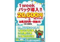 honatsu_1week2_201611